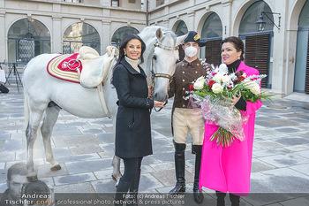 Anna Netrebko bei den Lipizzanern - Spanische Hofreitschule - Stallburg Wien - Di 02.02.2021 - Anna NETREBKO, Sonja KLIMA mit Bereiter und Lipizzaner Pferd52