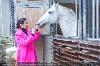 Anna Netrebko bei den Lipizzanern - Spanische Hofreitschule - Stallburg Wien - Di 02.02.2021 - Anna NETREBKO mit Lipizzaner Pferd66