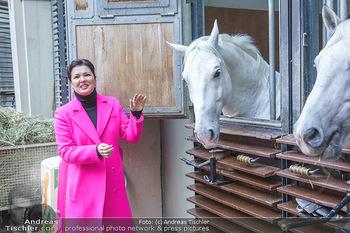 Anna Netrebko bei den Lipizzanern - Spanische Hofreitschule - Stallburg Wien - Di 02.02.2021 - Anna NETREBKO mit Lipizzaner Pferd70
