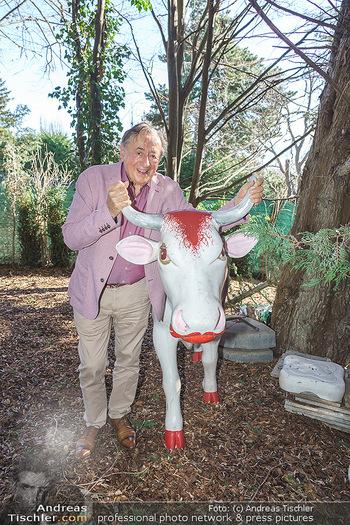 Besuch bei Richard Lugner - Privatvilla, Wien - Do 04.02.2021 - Richard LUGNER mit Plastikkühen in seinem Garten5