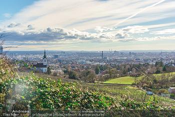 Besuch bei Richard Lugner - Privatvilla, Wien - Do 04.02.2021 - Blick über die Weingärten Richtung Wien von Döbling aus bei S9