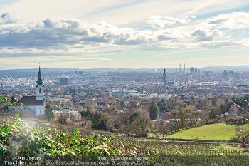Besuch bei Richard Lugner - Privatvilla, Wien - Do 04.02.2021 - Blick über die Weingärten Richtung Wien von Döbling aus bei S10