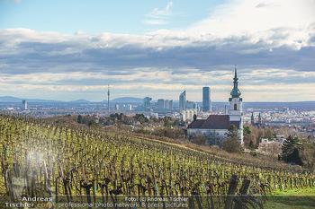 Besuch bei Richard Lugner - Privatvilla, Wien - Do 04.02.2021 - Blick über die Weingärten Richtung Wien von Döbling aus bei S24