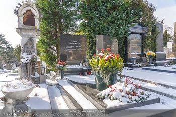 Peter Alexander Grab - Friedhof Grinzing, Wien - Do 11.02.2021 - Grab von Peter ALEXANDER (Hildegard, Susanne, Michael), Grabstä1