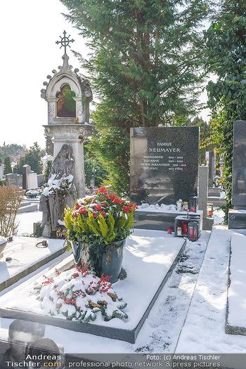 Peter Alexander Grab - Friedhof Grinzing, Wien - Do 11.02.2021 - Grab von Peter ALEXANDER (Hildegard, Susanne, Michael), Grabstä2