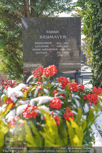 Peter Alexander Grab - Friedhof Grinzing, Wien - Do 11.02.2021 - Grab von Peter ALEXANDER (Hildegard, Susanne, Michael), Grabstä3