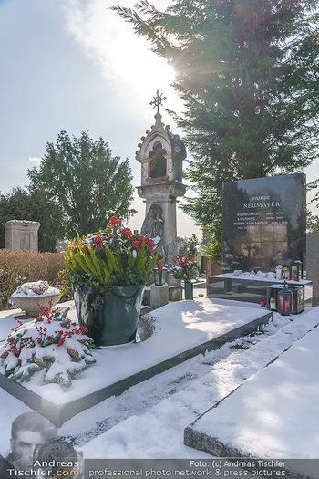 Peter Alexander Grab - Friedhof Grinzing, Wien - Do 11.02.2021 - Grab von Peter ALEXANDER (Hildegard, Susanne, Michael), Grabstä4