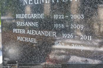 Peter Alexander Grab - Friedhof Grinzing, Wien - Do 11.02.2021 - Grab von Peter ALEXANDER (Hildegard, Susanne, Michael), Grabstä5