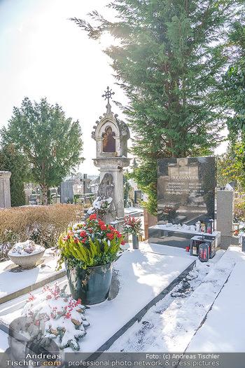 Peter Alexander Grab - Friedhof Grinzing, Wien - Do 11.02.2021 - Grab von Peter ALEXANDER (Hildegard, Susanne, Michael), Grabstä7