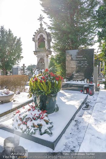 Peter Alexander Grab - Friedhof Grinzing, Wien - Do 11.02.2021 - Grab von Peter ALEXANDER (Hildegard, Susanne, Michael), Grabstä8