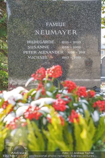Peter Alexander Grab - Friedhof Grinzing, Wien - Do 11.02.2021 - Grab von Peter ALEXANDER (Hildegard, Susanne, Michael), Grabstä9