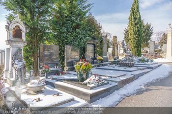 Peter Alexander Grab - Friedhof Grinzing, Wien - Do 11.02.2021 - Grab von Peter ALEXANDER (Hildegard, Susanne, Michael), Grabstä10