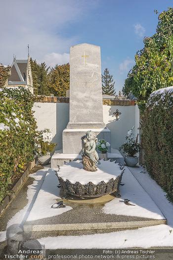Peter Alexander Grab - Friedhof Grinzing, Wien - Do 11.02.2021 - Grabstätte Hans MOSER11