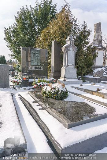 Peter Alexander Grab - Friedhof Grinzing, Wien - Do 11.02.2021 - Grabstätte Familie DICHAND12