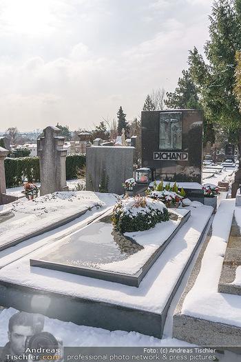 Peter Alexander Grab - Friedhof Grinzing, Wien - Do 11.02.2021 - Grabstätte Familie DICHAND13
