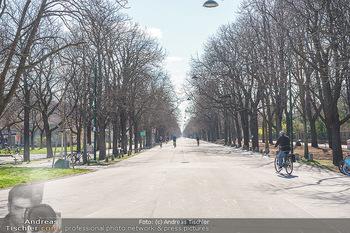 Lokalaugenschein Wien - Wien - Di 30.03.2021 - Prater Hauptallee, Radfahrer3