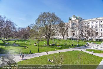Lokalaugenschein Wien - Wien - Di 30.03.2021 - Menschen genießen bei Picknick im Burggarten die Frühlingstemp54
