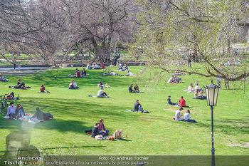 Lokalaugenschein Wien - Wien - Di 30.03.2021 - Menschen genießen bei Picknick im Burggarten die Frühlingstemp56