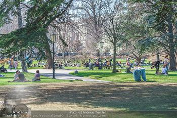 Lokalaugenschein Wien - Wien - Di 30.03.2021 - Menschen genießen bei Picknick im Burggarten die Frühlingstemp58
