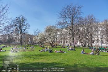 Lokalaugenschein Wien - Wien - Di 30.03.2021 - Menschen genießen bei Picknick im Burggarten die Frühlingstemp60