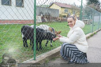 Spaziergang mit Lili Klein - Maria Gugging - Do 08.04.2021 - Liliana KLEIN (Lili, Lilli) mit Ziegen und Hühnern beim Bio-Bau1