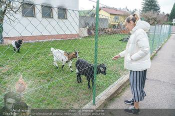 Spaziergang mit Lili Klein - Maria Gugging - Do 08.04.2021 - Liliana KLEIN (Lili, Lilli) mit Ziegen und Hühnern beim Bio-Bau2