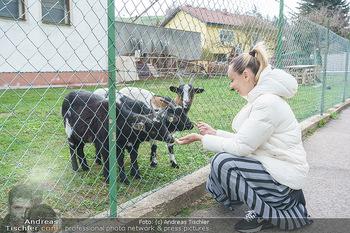 Spaziergang mit Lili Klein - Maria Gugging - Do 08.04.2021 - Liliana KLEIN (Lili, Lilli) mit Ziegen und Hühnern beim Bio-Bau4
