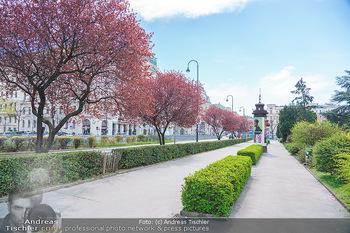 Lokalaugenschein Wien - Wien - Mo 12.04.2021 - 5