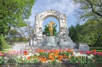 Interview mit Stefano Bernardin - Stadtpark, Wien - Do 06.05.2021 - Johann Strauss Denkmal im Stadtpark24