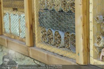 Wildbienen Hotel Eröffnung - Seehof, Donnerskirchen - Sa 05.06.2021 - Das Bienenhotel Insektenhotel5