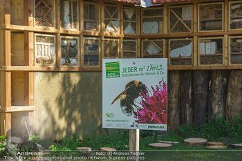 Wildbienen Hotel Eröffnung - Seehof, Donnerskirchen - Sa 05.06.2021 - Das Bienenhotel Insektenhotel10