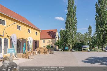 PopUp Heuriger - Seehof, Donnerskirchen - Sa 03.07.2021 - Pop-Up Heurigen am Esterhazy Bio Landgut Seehof Donnerskirchen10