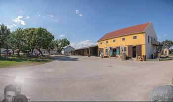 PopUp Heuriger - Seehof, Donnerskirchen - Sa 03.07.2021 - Pop-Up Heurigen am Esterhazy Bio Landgut Seehof Donnerskirchen18