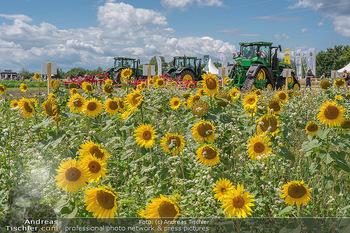 Biofeldtage Tag 1 - Seehof, Donnerskirchen - Fr 06.08.2021 - Sonnenblumen Feld, Traktoren, Blume, Wiese, Blumenwiese, Sonne, 161