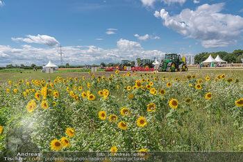 Biofeldtage Tag 1 - Seehof, Donnerskirchen - Fr 06.08.2021 - Sonnenblumen Feld, Traktoren, Blume, Wiese, Blumenwiese, Sonne, 162