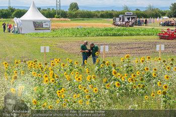 Biofeldtage Tag 1 - Seehof, Donnerskirchen - Fr 06.08.2021 - Sortenschau, Anbau, Getreide, Ernte, Feld, Ackerbau, Landwirtsch171