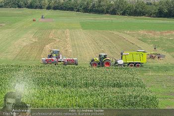 Biofeldtage Tag 1 - Seehof, Donnerskirchen - Fr 06.08.2021 - 178