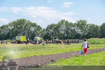 Biofeldtage Tag 2 - Seehof, Donnerskirchen - Sa 07.08.2021 -  14