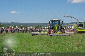 Biofeldtage Tag 2 - Seehof, Donnerskirchen - Sa 07.08.2021 -  43