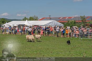 Biofeldtage Tag 2 - Seehof, Donnerskirchen - Sa 07.08.2021 -  94