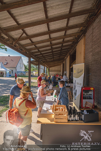 Biofeldtage Tag 2 - Seehof, Donnerskirchen - Sa 07.08.2021 -  270