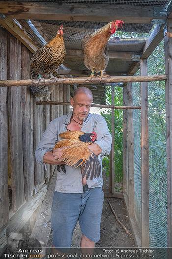 Besuch bei Gery Keszler - Bauernhof, Südburgenland - Sa 04.09.2021 - Gery KESZLER mit seinen Hühnern12