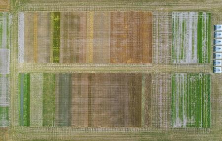 Felder Landwirtschaft Luftbild von oben Drohnenfoto Agrar Kulturen Anbau Klima Nachhaltigkeit Vielfalt Ackerbau - Felder Landwirtschaft Luftbild von oben Drohnenfoto Agrar Kultur by Andreas Tischler